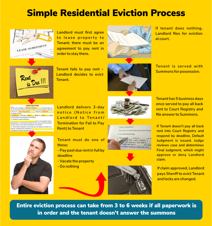 IMAGE Simple Residential Eviction Process Infographic